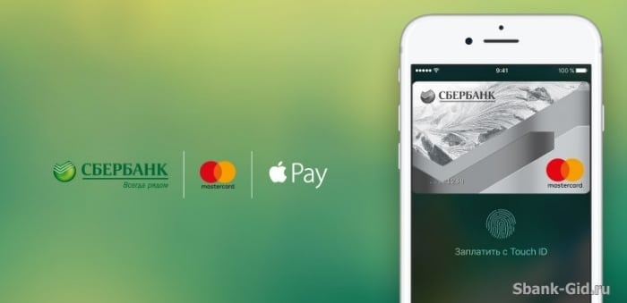 Особенности оплаты через приложение Сбербанк Онлайн